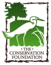 CONS Logo 2014